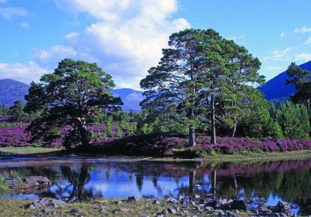 panorama Lochan Deo in Glen Einich, Rothiemurchus