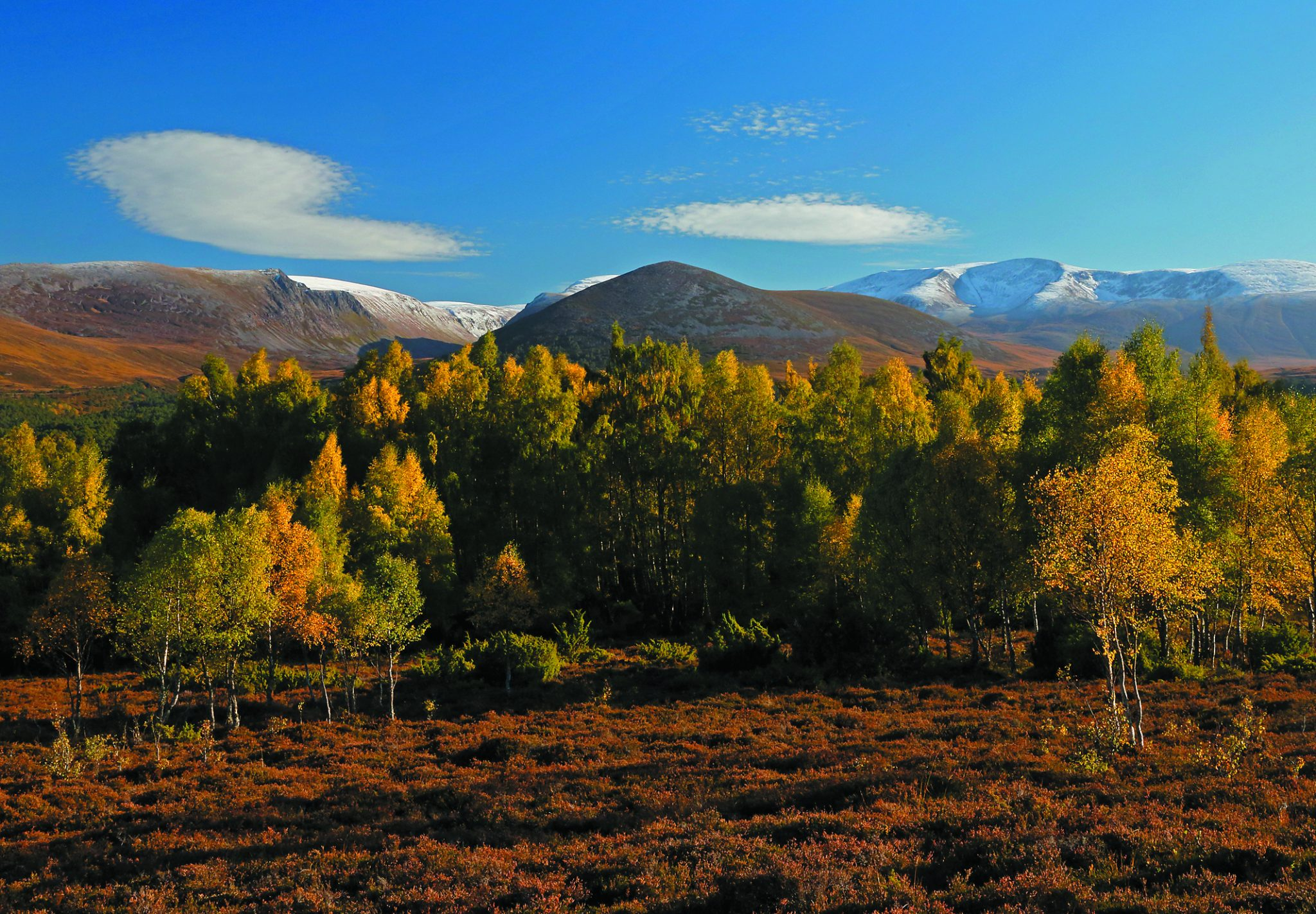 Early Autumn Cairngorms